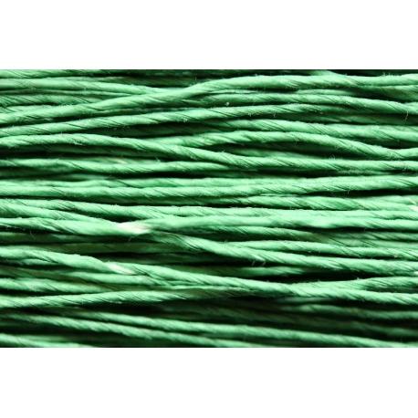 """Papiergaren """"Dun"""" 100gram - licht groen (014)"""