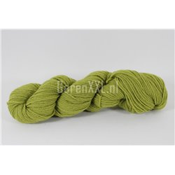 Borduurwol - Tapestry - Grass Green (253)